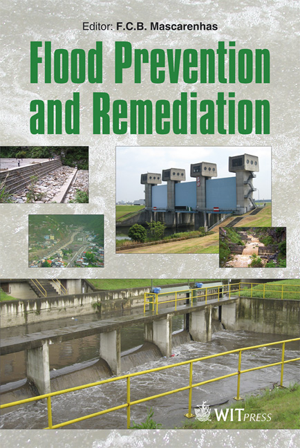 Flood Prevention and Remediation